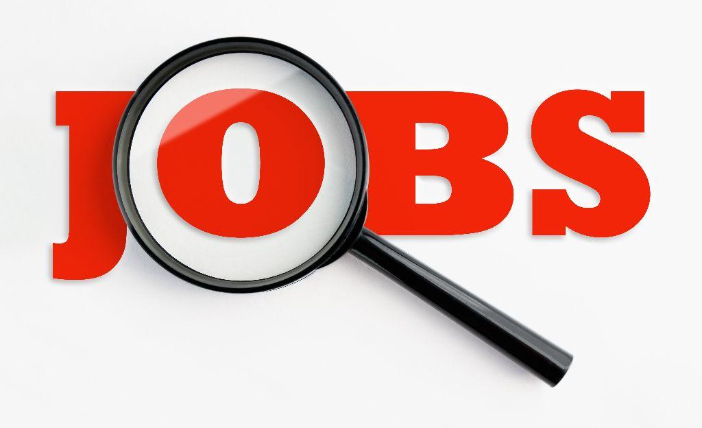 jobs-employee-dpiresearch
